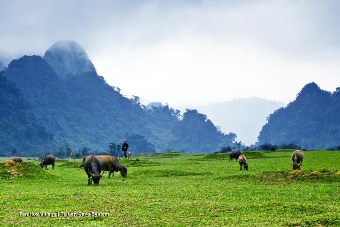 <p> Điểm đầu tiên đoàn làm phim Kong: Skull Island gồm hơn 120 người đặt chân khi đến Việt Nam là Quảng Bình. Những địa điểm được lựa chọn để quay bộ phim bom tấn là hang Chuột (xã Tân Hóa) và hồ Yên Phú (xã Trung Hóa, huyện Minh Hóa). Ảnh: <em>Ryan Deboodt.</em></p>