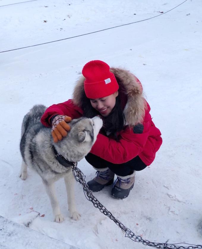 """<p> Bất ngờ lớn nhất lại đến từ những chú chó Husky Siberia - vốn được ví như """"người vận chuyển"""" trên những đồng tuyết trắng mênh mông. Không ai nghĩ rằng những chú chó có thân hình nhỏ nhắn này lại có khả năng kéo xe phi thường: chúng có thể chạy liên tục với tốc độ tới 80km/h trong khoảng 3 tiếng. Giống chó này còn rất tình cảm, nếu được chăm sóc tốt, yêu thương thì chúng sẽ quấn quýt và chạy rất hăng hái. Đêm đến, chúng rúc vào trong tuyết ngủ ngoan ngoãn.</p>"""