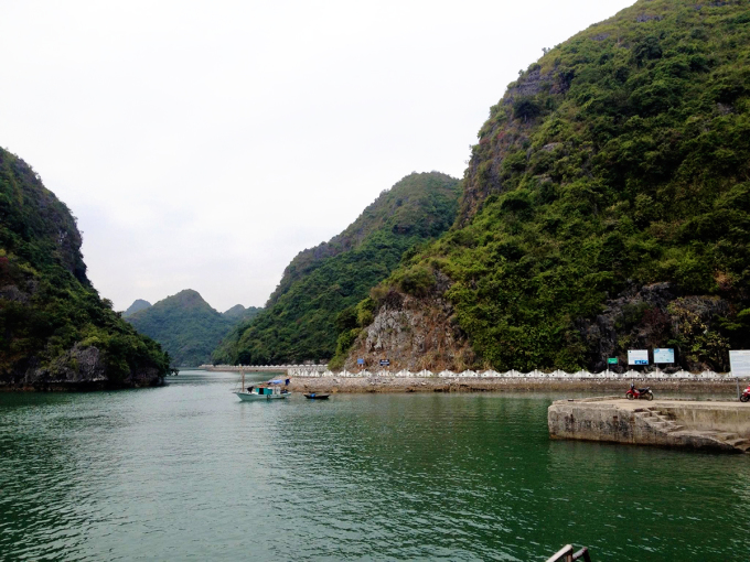 """<p class=""""Normal""""> <span>Du khách có thể thuê tàu từ cảng Bến Bèo đến làng chài Việt Hải, hoặc đi bộ xuyên rừng trong Vườn quốc gia Cát Bà, Hải Phòng 5 tiếng. Ảnh: </span><em>Nhóm Thảo Quả.</em></p>"""