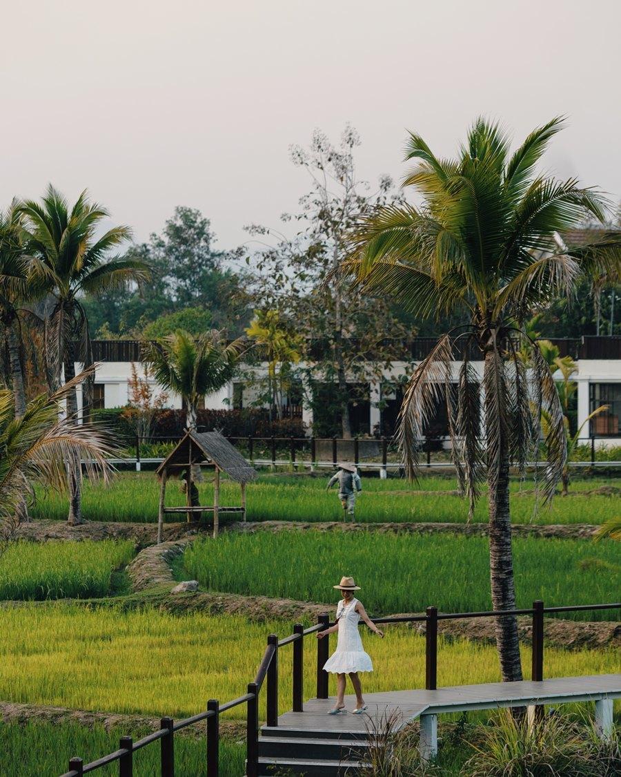 Những ngày bình yên ở Luang Prabang - 8