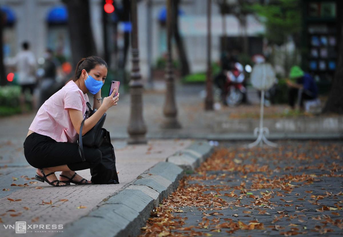 Sài Gòn mùa hoa dầu bay - 9