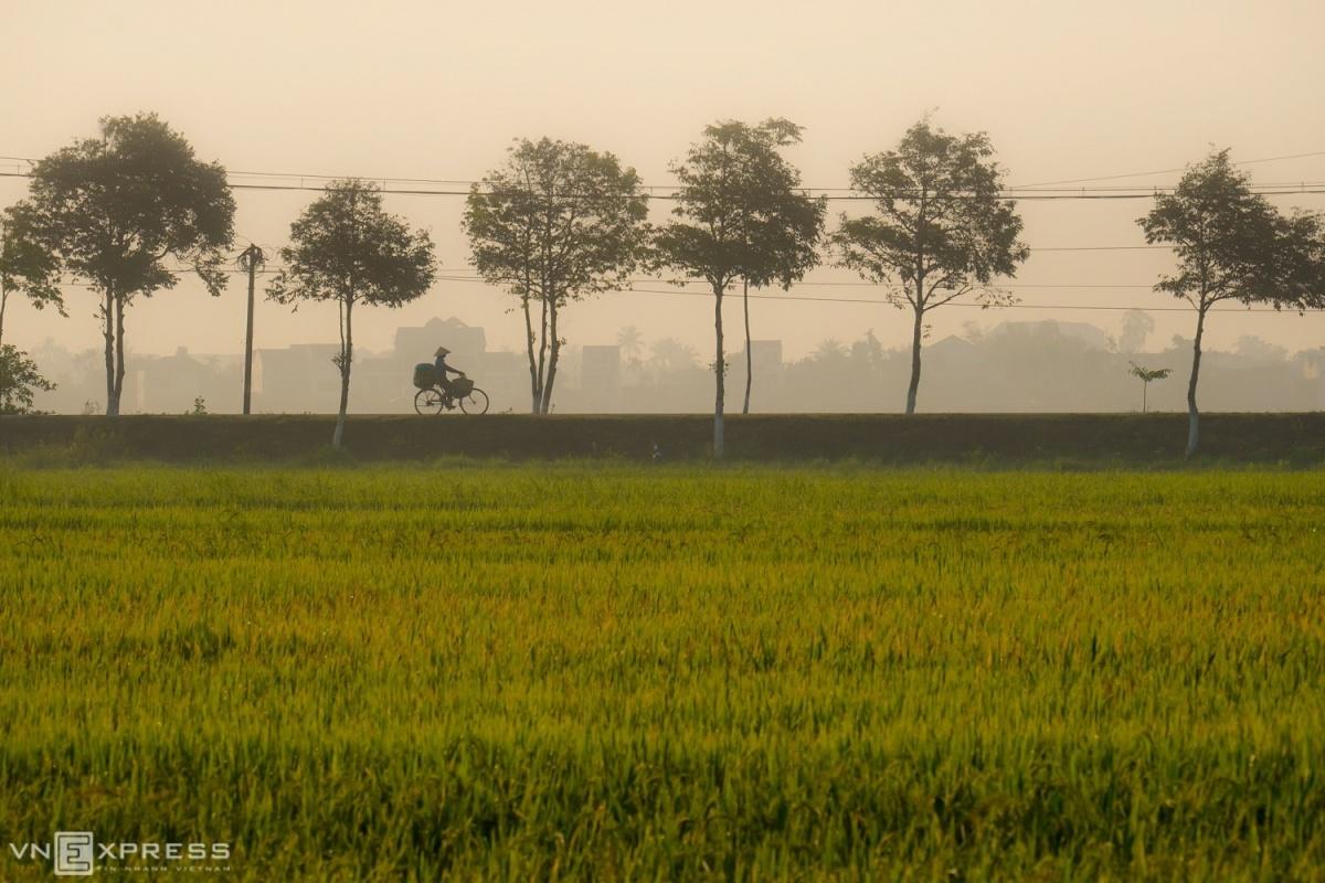 Lang-que-Quang-Nam-2-1588304469.jpg?w=1200&h=0&q=100&dpr=1&fit=crop&s=QpzRWhGhKycwx1-xJWHw0w