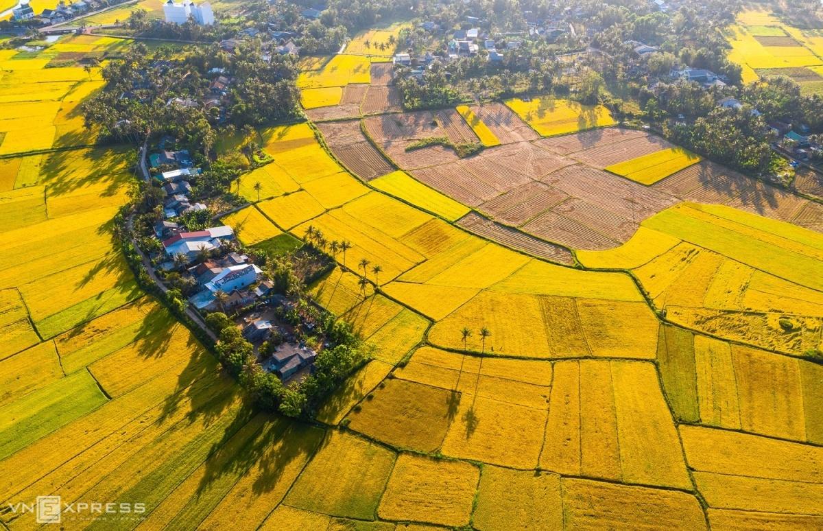 Dong-que-Binh-Dinh-NTT-12-1588926453.jpg?w=1200&h=0&q=100&dpr=1&fit=crop&s=GxvvbGUgDESxm12BatJebQ