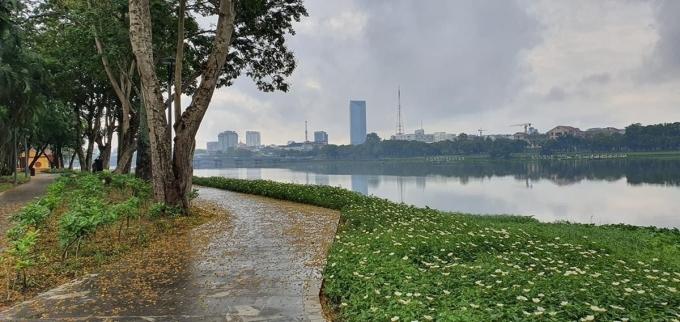 Đường đi bộ ngập lá trong cơn mưa mùa hạ. Đội ngũ nhân viên vệ sinh túc trực thường xuyên, trả lại vẻ đẹp cho tuyến đường chỉ sau vài phút.