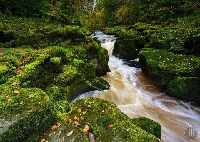 Bolton Strid với vẻ đẹp khiến nhiều người mê mẩn. Ảnh: James Whitesmith/Flickr.
