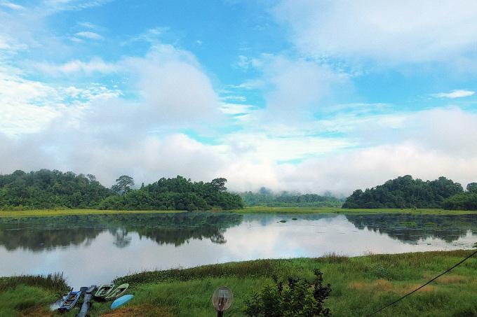 Đầm lầy cá sấu là điểm tham quan hút khách trong tuyến trải nghiệm rừng Nam Cát Tiên. Ảnh: NVCC