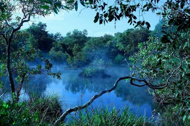Tham khảo những điểm tham quan nên tới ở Hồ Tràm - ảnh 9