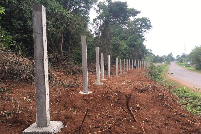 Hàng rào bê tông dựng trên đất rừng. Ảnh: Quang Hà