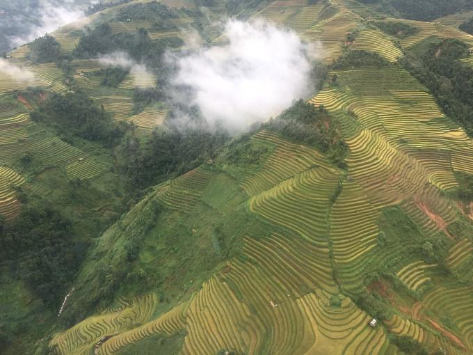 Khung cảnh ruộng bậc thang Mù Cang Chải được nhìn từ trực thăng. Trong khoảng tháng 9, tháng 10 hàng năm sẽ là lúc các ruộng lúa vàng óng.