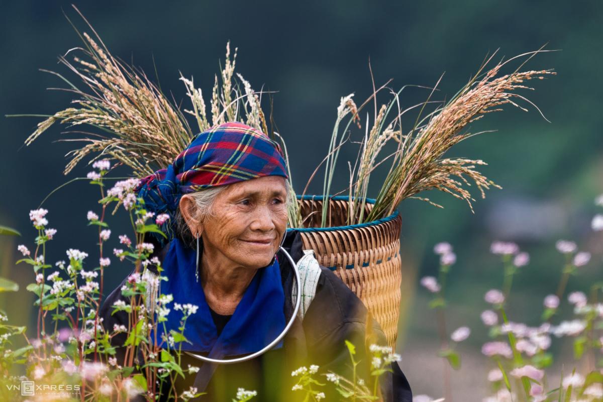 Nét đẹp phụ nữ Việt dọc miền đất nước - 2