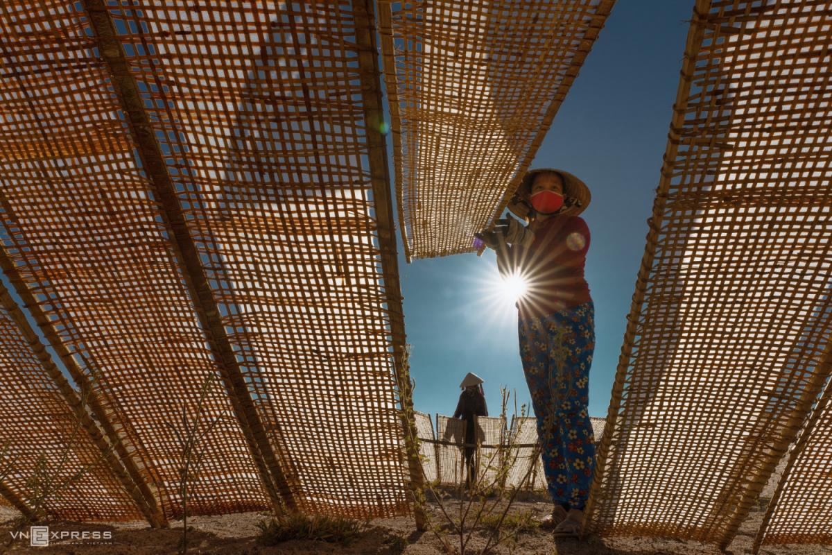 Nét đẹp phụ nữ Việt dọc miền đất nước - 8
