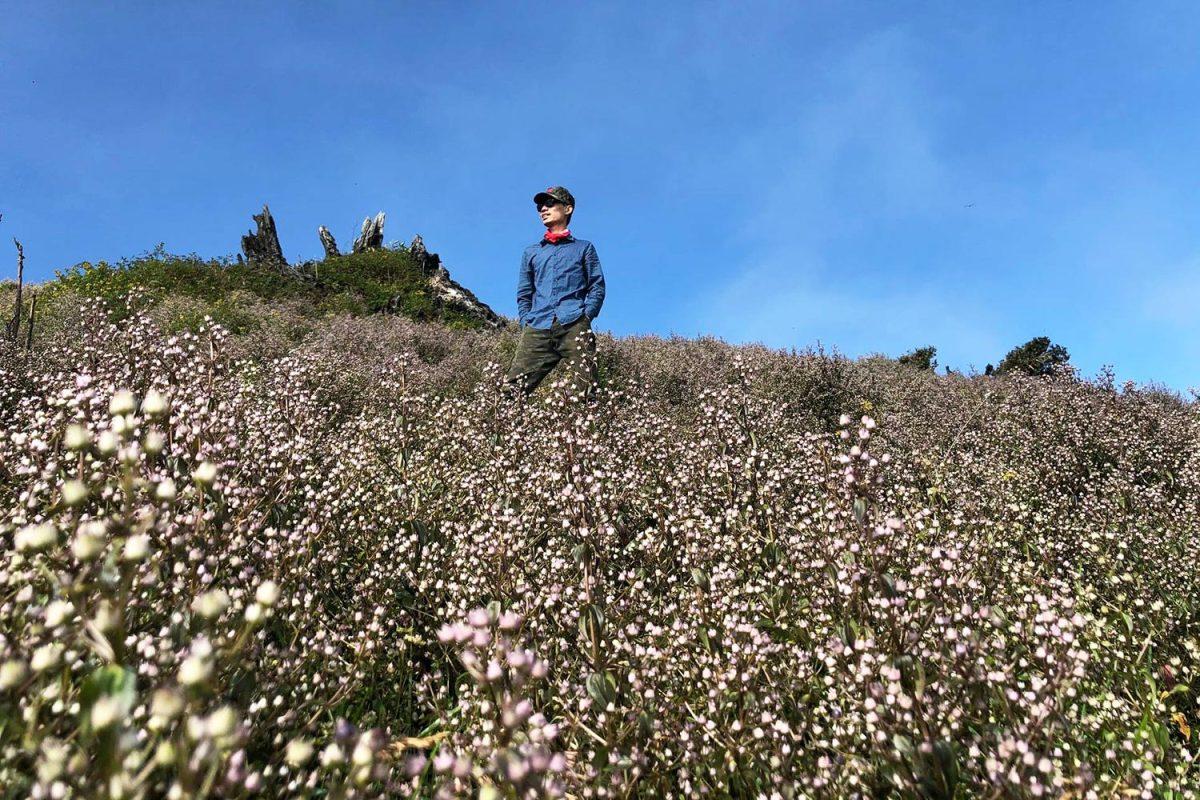 Những ngày cuối thu, đường lên Tà Chì Nhù phủ đầy sắc tím của hoa chi pâu. Đó là một trong những lý do khiến anh kỹ sư xây dựng xách ba lô lên đi chinh phục đỉnh núi.