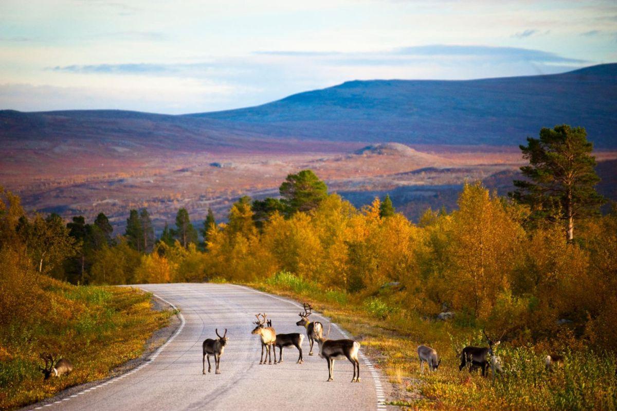 10 nơi đón mùa thu đẹp nhất thế giới - 4