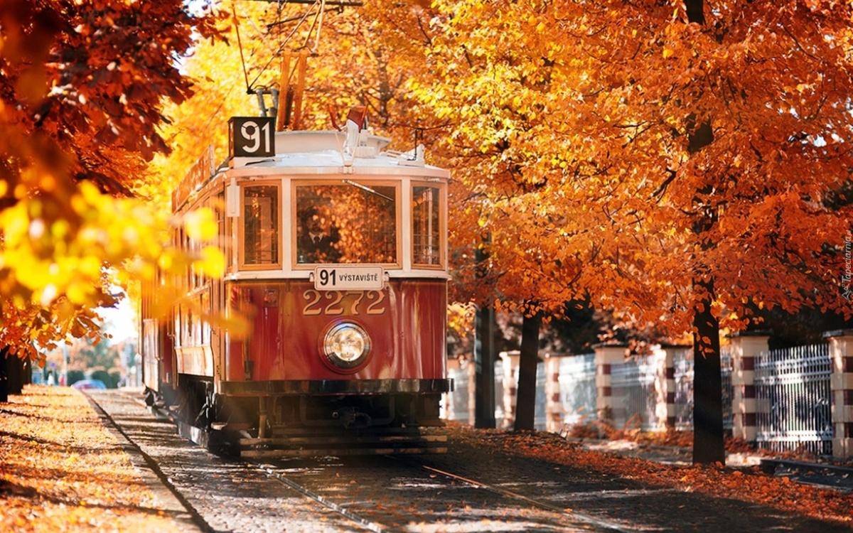 10 nơi đón mùa thu đẹp nhất thế giới - 2