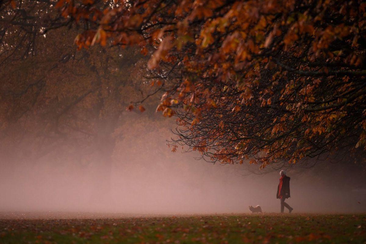 Mùa thu nhuộm màu khắp thế giới - Ảnh 5