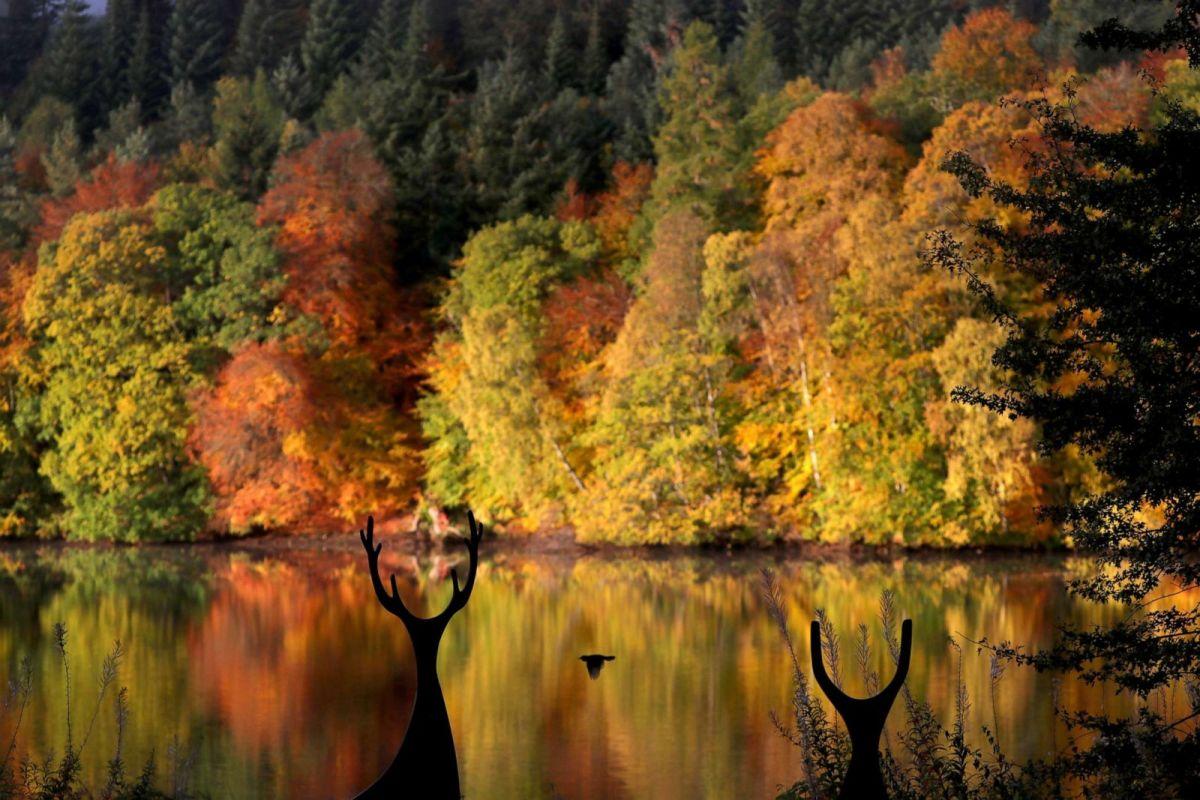 Mùa thu nhuộm màu khắp thế giới - Ảnh 6
