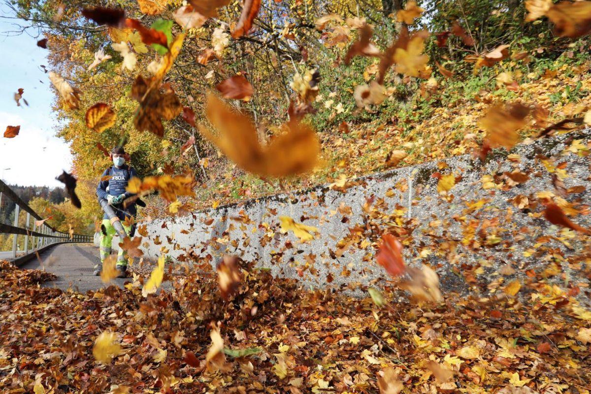 Mùa thu nhuộm màu khắp thế giới - Ảnh 9