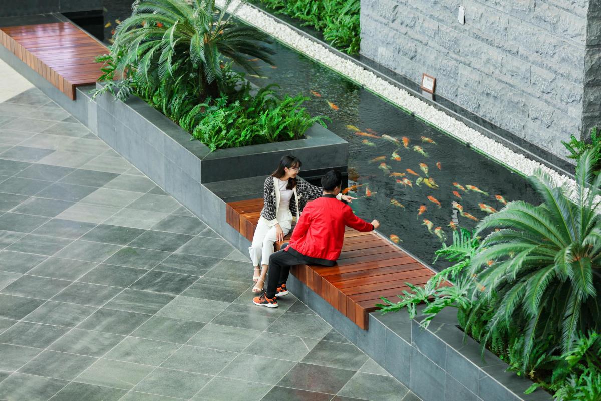 Khám phá không gian xanh tại sân bay Vân Đồn