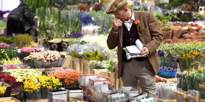 Vì sao nhất định phải đến chợ hoa London?