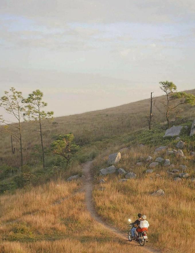 Đường mòn lên đỉnh Bình Hương đi qua những đồi cỏ cháy. Ảnh: Anh Xê