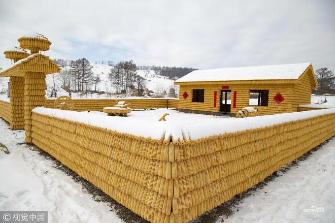 Ngôi nhà bằng ngô nhìn từ xa như được dát vàng. Ảnh: CCTV