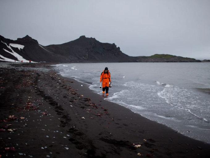 Ngày nay, Hiệp ước này có 54 bên tham gia với hơn 70 trạm nghiên cứu được đặt tại đây. Mỗi năm, có khoảng 1.000 nhà khoa học tiến hành nghiên cứu tại các trạm này. Họ nghiên cứu về các chủ đề khác nhau: sinh vật học, sinh thái học, địa chất học... Trên ảnh là Wenjun Li, một nhà hóa học biển đến từ Trung Quốc, đang đi dọc bãi biển để tìm kiếm các mẫu vật ở Hannah Point trên đảo Livingston thuộc quần đảo South Shetland. Ảnh: Natacha Pisarenko/AP