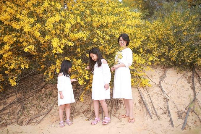 Theo chị Đinh My Ly (Phan Thiết) cho biết, du khách thường đến đông vào khoảng thời gian này để chụp ảnh với hoa keo lá tràm. Cung đường gợi ý cho du khách là 706B, nơi gần nhất có rừng keo lá tràm cho những du khách đi từ phía TP HCM đến Phan Thiết.