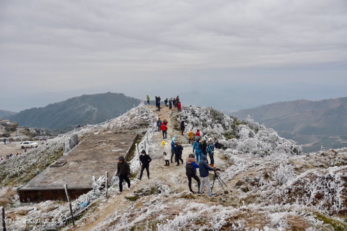 Tourists come to Mau Son to watch the ice and snow.  Photo: Hoang Lang Huy.