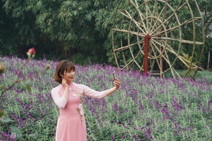 Du khách chụp ảnh tại vườn hoa oải hương. Ảnh: Ngân Dương