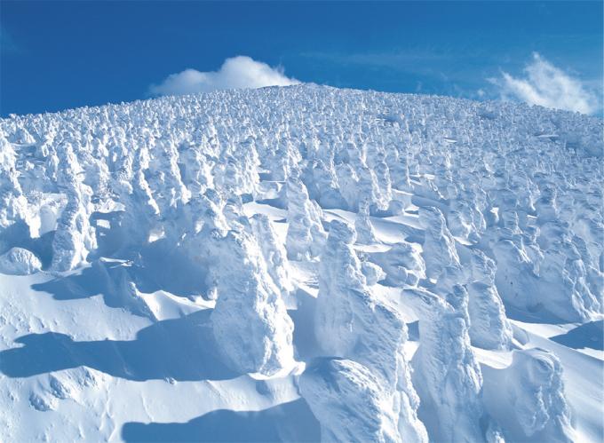 Du khách đến Tohoku Nhật Bản khám phá khu rừng quái vật tuyết.