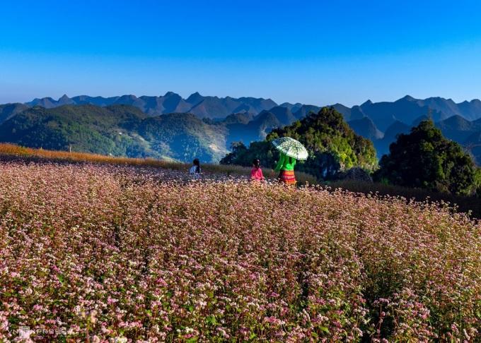 Cao nguyên đá Đồng Văn (tỉnh Hà Giang) được CNN giới thiệu là một trong 10 điểm đến Việt Nam hàng đầu năm 2021. Ảnh: Nguyễn Đức Phước.