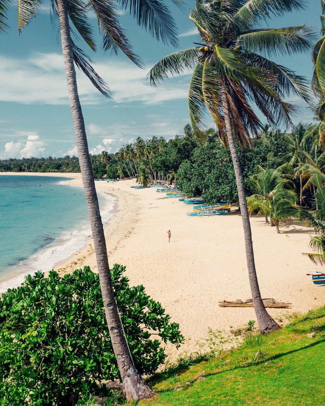 Bãi biển Côn Đảo vào top đẹp nhất thế giới - Ảnh 2