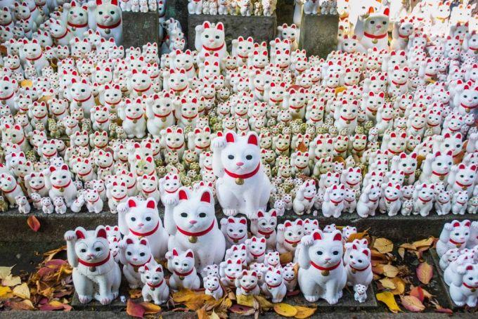 Hàng trăm bức tượng mèo thần tài trong đền Gotokuji. Ảnh: Asian Wanderlust