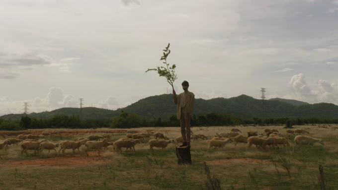 Điểm đặc sắc khác khi ghé thăm Ninh Thuận là du khách có thể ghé thăm các đồng cừu để trải nghiệm đời sống du mục. Thời gian tham quan lý tưởng là từ tháng 5 đến tháng 9 khi thời tiết đẹp, cây cỏ xanh mướt làm thức ăn cho cừu. Một gợi ý cho du khách là đồng cừu An Hoà, nằm gần đồng cỏ hoang trong MV.