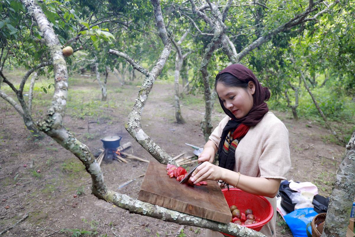 Thung lũng mận tam hoa ở Nghệ An vào vụ - 7