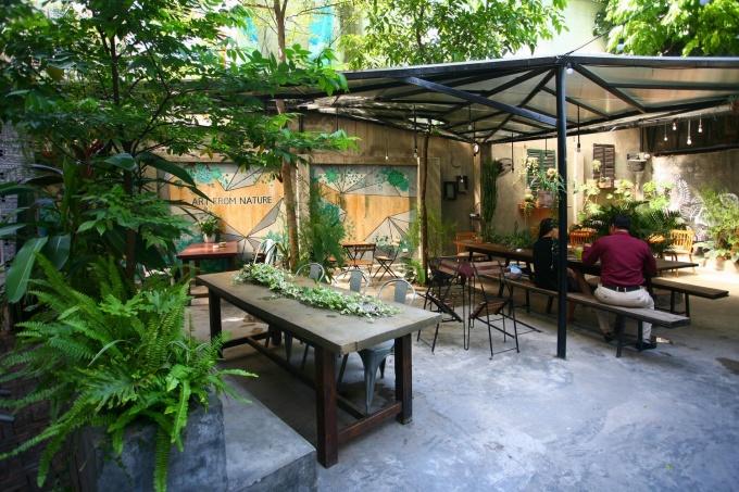 Quán cà phê nằm trên con phố nhỏ, gần gò Đống Đa, dưới chân một toà chung cư cao tầng. Quán được thiết kế theo kiểu cà phê sân vườn với nhiều cây xanh và không gian mộc mạc, giản dị. Bước vào quán là có thể thấy cây xanh ở khắp mọi nơi.Cây xanh được trồng khá tự do và ngẫu hứng, trong đó có những cây hiện trạng từ trước và những cây mới trồng trong bồn, trong chậu hay trực tiếp lên nền đất. Tất cả tạo một không gian xanh mát mẻ và gần gũi thiên nhiên.