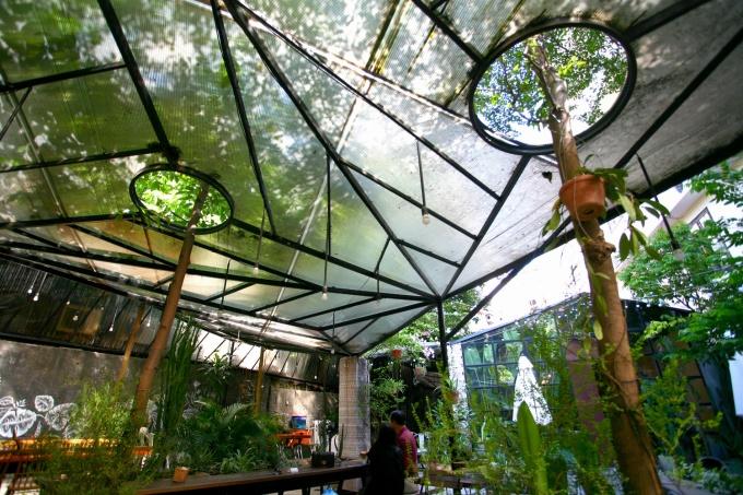 Những nơi bố trí bàn cà phê trong vườn đều lợp mái nhựa lấy sáng. Những cây to, cao được phép vươn qua mái để phát triển mạnh mẽ. Những cây này tạo bóng mát đáng kể khi trời nắng.