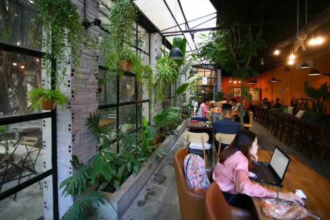 Chỗ ngồi của quán rất đa dạng, dành cho nhiều nhóm khách với số lượng khác nhau. Có chỗ là chiếc bàn dài dành cho nhiều người, có chỗ là bàn nhỏ xinh vừa đủ cho 2 người. Quán có không gian cả trong nhà lẫn ngoài trời, bên trong nhà sử dụng điều hòa và không hút thuốc. Nội thất trong quán mộc mạc, kết hợp cả tường và một khoảng trần kính để kết nối với không gian sân vườn bên ngoài. Trong nhà quán cũng trồng nhiều cây xanh, chủ yếu là chậu treo.