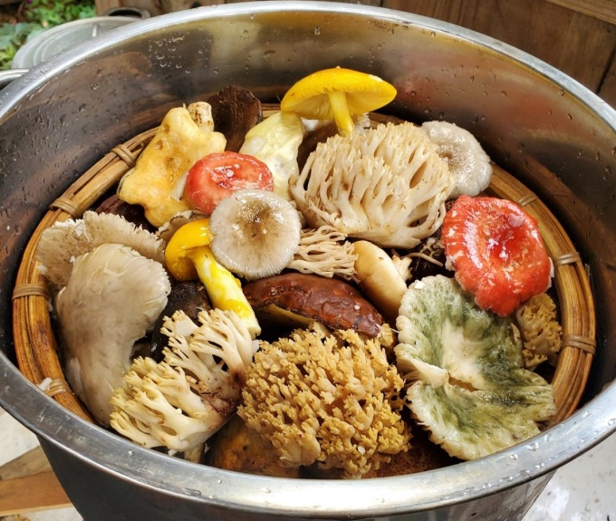 Chậu nấm được làm sạch đất và rửa kỹ với nước muối, một số loại nấm có nhớt phải trụng qua nước sôi trước khi chế biến món ăn.