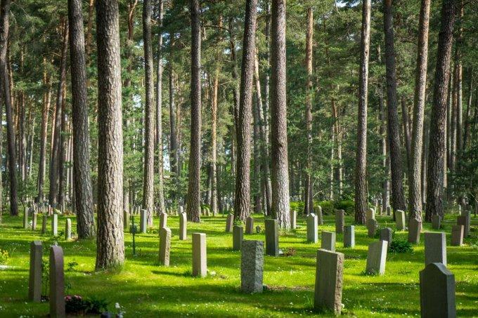 Mọi người đi bộ, chạy bộ, đẩy xe đẩy, dắt chó đi dạo, hoặc thậm chí gặp gỡ bạn bè trong các nghĩa trang.