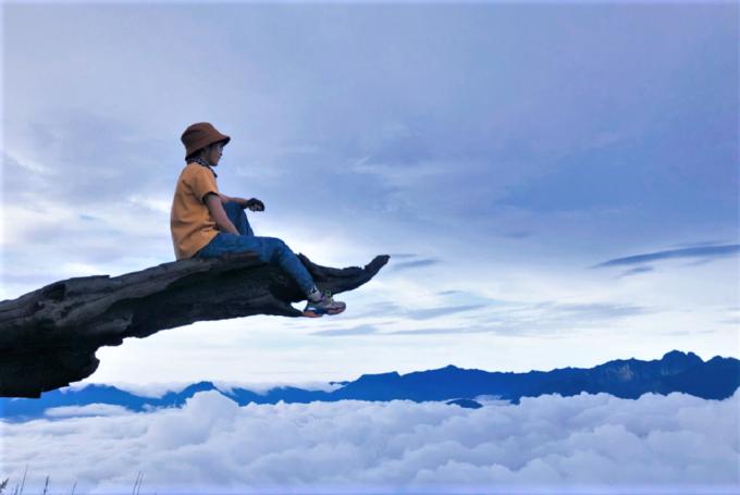 Cành cây khô hình đầu voi trên đường lên núi Lảo Thẩn (2.860 m), thuộc địa phận thôn Phìn Hồ, xã Y Tý, huyện Bát Xát, tỉnh Lào Cai. Địa hình núi không quá phức tạp, du khách thường mất 2 ngày một đêm để hoàn thành chuyến đi. Dọc đường lên núi có nhiều điểm chụp ảnh đẹp, ngắm mây bay lượn dưới chân. Một cành cây khô có hình dạng giống đầu voi được xem là điểm check-in không thể bỏ qua khi đến Lảo Thẩn, nhìn trông khá mạo hiểm nhưng gốc cây chỉ cách mặt đất vài mét. Ảnh: Tiểu Châu
