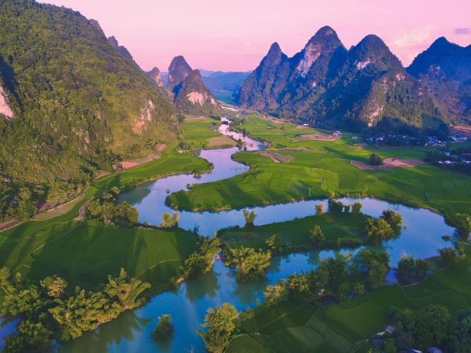 Những cánh đồng lúa ở Phong Nậm, gần nơi Quốc ở 2 tháng nay.