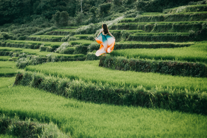 Những cánh đồng lúa xanh rì nối tiếp nhau ở xã Dun, huyện Chư Sê. Ảnh: Nguyễn Tấn Kần