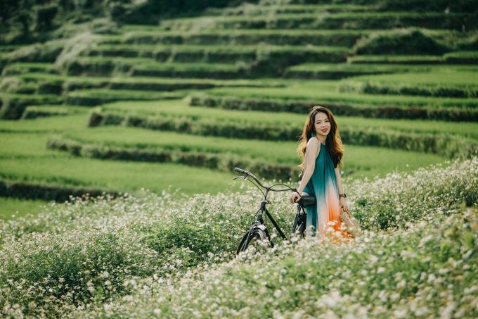Sắc trắng của hoa xuyến chi tô điểm thêm nét đẹp thơ mộng cho cánh đồng lúa ở Chư Sê. Ảnh: Nguyễn Tấn Kần