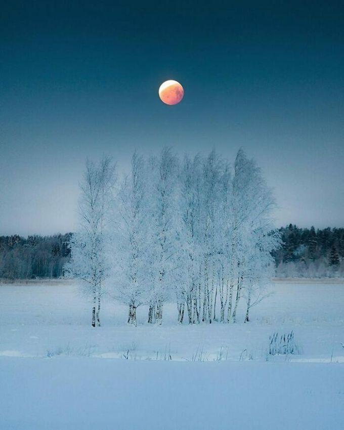Rất nhiều du khách nói rằng, sau khi dịch bệnh được kiểm soát họ nhất định sẽ ghé thăm nơi này để chiêm ngưỡng trăng máu ở Phần Lan. Ảnh: Reddit