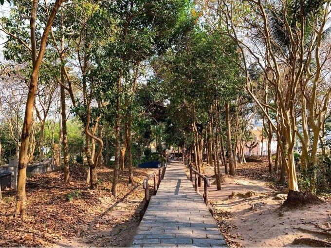 The path from the temple to Mac Cuu mausoleum on Binh San mountain.  Photo: @@bell.beoo/Instagram