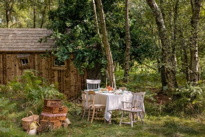 Bàn ăn được đặt giữa rừng. Ảnh: Airbnb