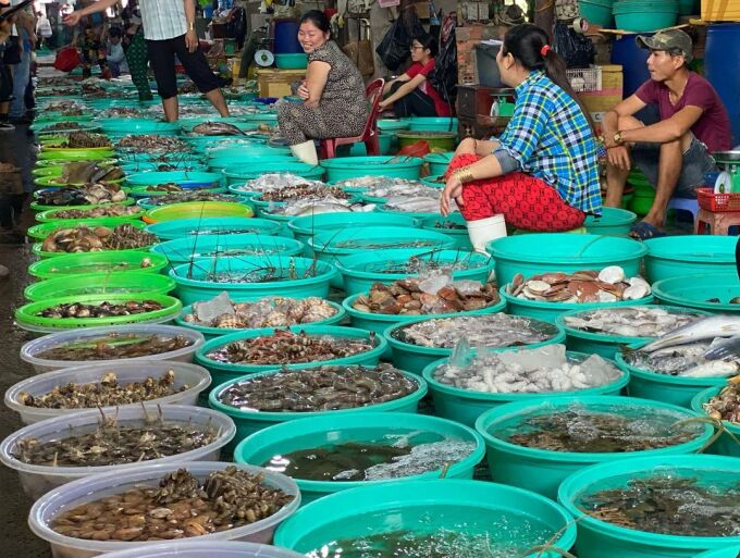Hang Duong Seafood Market is an interesting destination for tourists