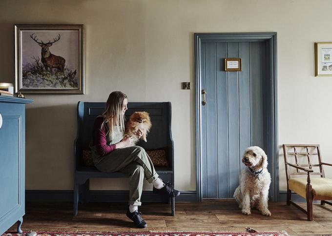 Bên trong khách sạn dành cho chó, có 7 nhân viên cùng lúc chăm sóc 10 con chó. Ảnh: Country Dog Hotel