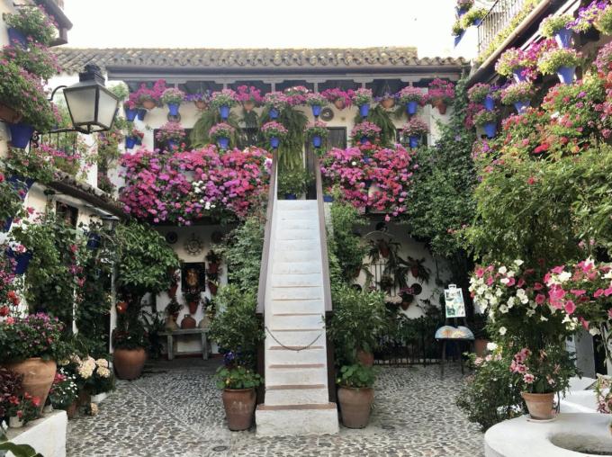 Không nổi tiếng như Madrid hay Barcelona, thành phố nhỏ Cordoba ít được du khách biết đến hơn, song mang nhiều nét quyến rũ và độc đáo khó tìm tại nơi khác trên thế giới. Cordoba thuộc vùng Andalucia phía nam Tây Ban Nha, là thành phố đầu tiên trên thế giới có 4 di sản văn hoá được UNESCO công nhận. Thành phố bên sông Guadalquivir này không chỉ được biết đến với những công trình kiến trúc tôn giáo nổi bật mà còn thu hút khách du lịch bởi những sân hiên nhà rực rỡ sắc hoa.